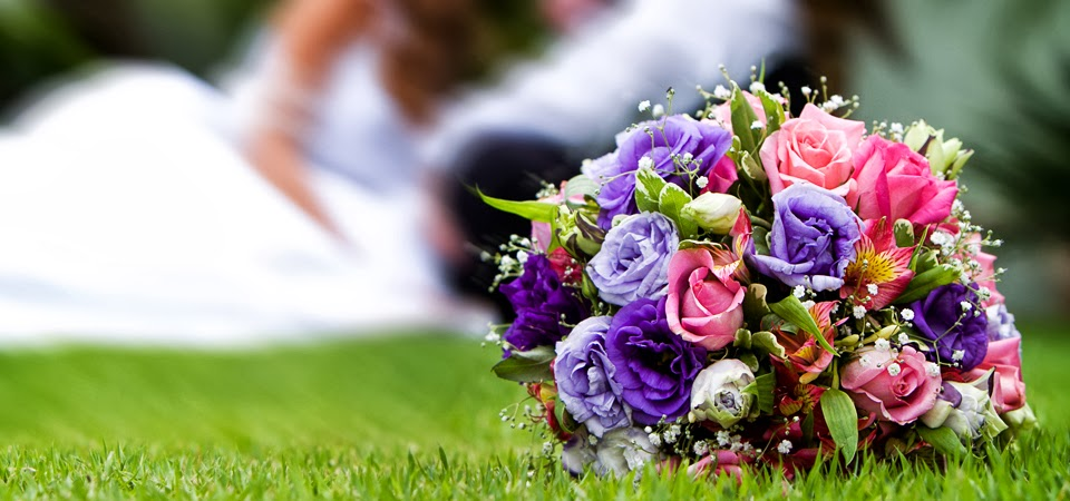 sydney-wedding-ceremony